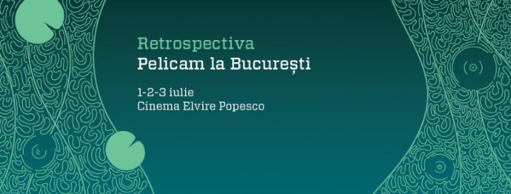 pelicam_elvira_page_cover-03